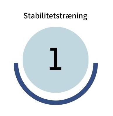 Stabilitetstraening step1